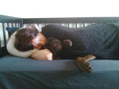 Afbeelding voor fragment: Eén kind op drie slaapt met een huisdier in bed